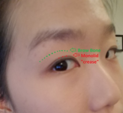 1. Monolid eye map.jpg
